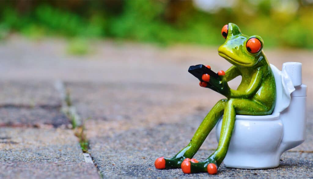 Groda sitter på toaletten med sin mobil