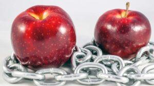 Äpplen i kedjor